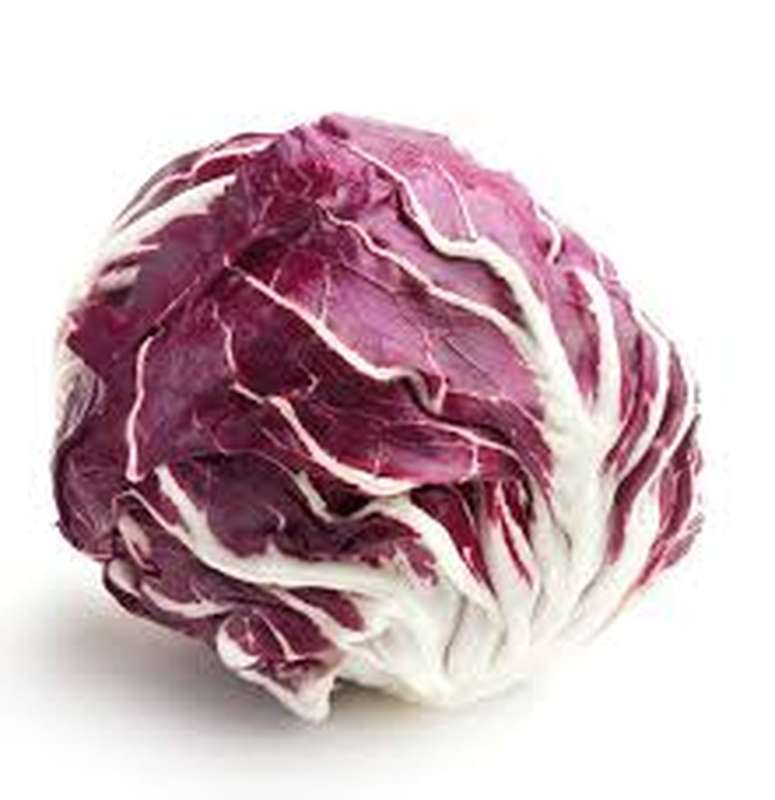 Salade trévise, Italie