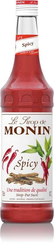 Sirop saveur Spicy, Monin (70 cl)