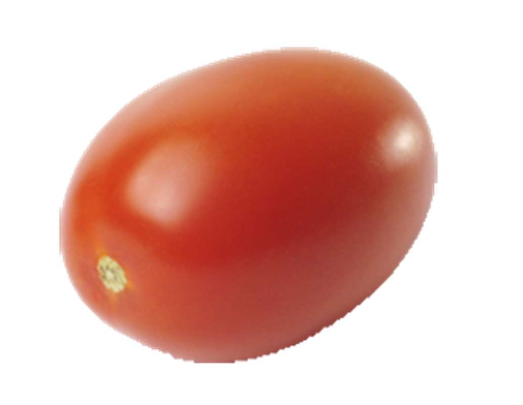 Tomates roma allongées rouge BIO, France