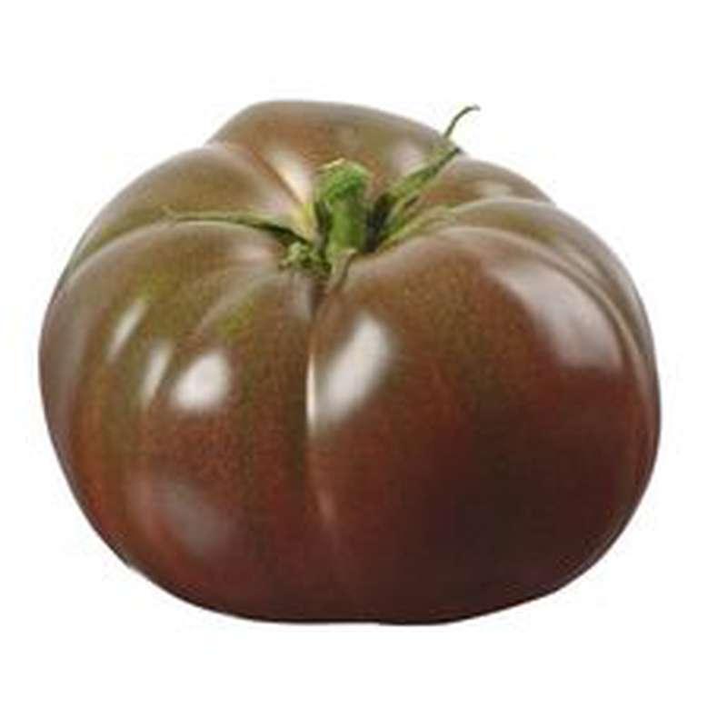 Tomate noire côtelée, Espagne