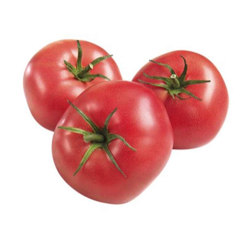 Tomates roses, France