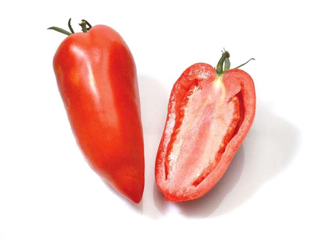 Tomates cornues des Andes, France