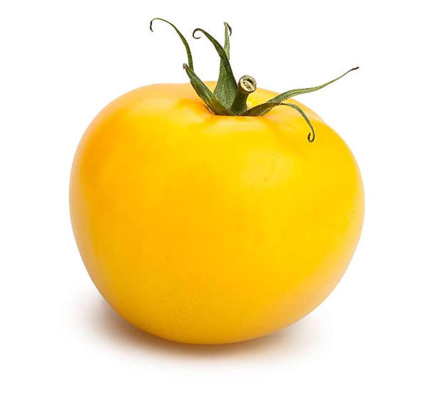 Tomates ronde charnue jaune BIO, France