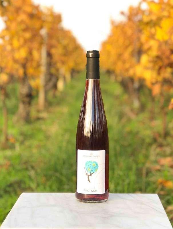 Pinot noir naturel du domaine Gross 2019 (75 cl)