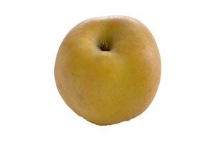 Pomme jaune Reinette grise du canada BIO, France