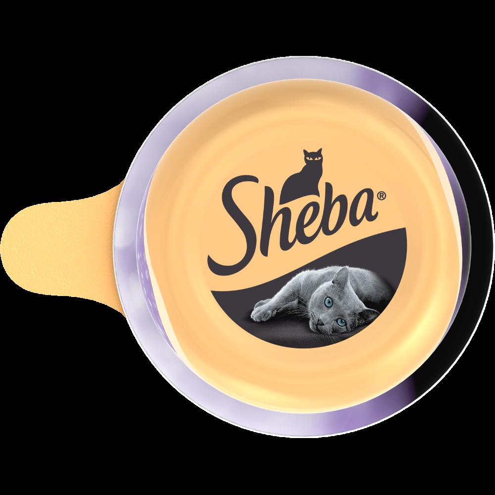 Dôme au thon et crevettes pour chat, Sheba (80 g)