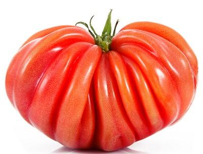 Tomate ancienne coeur de boeuf rouge BIO, France