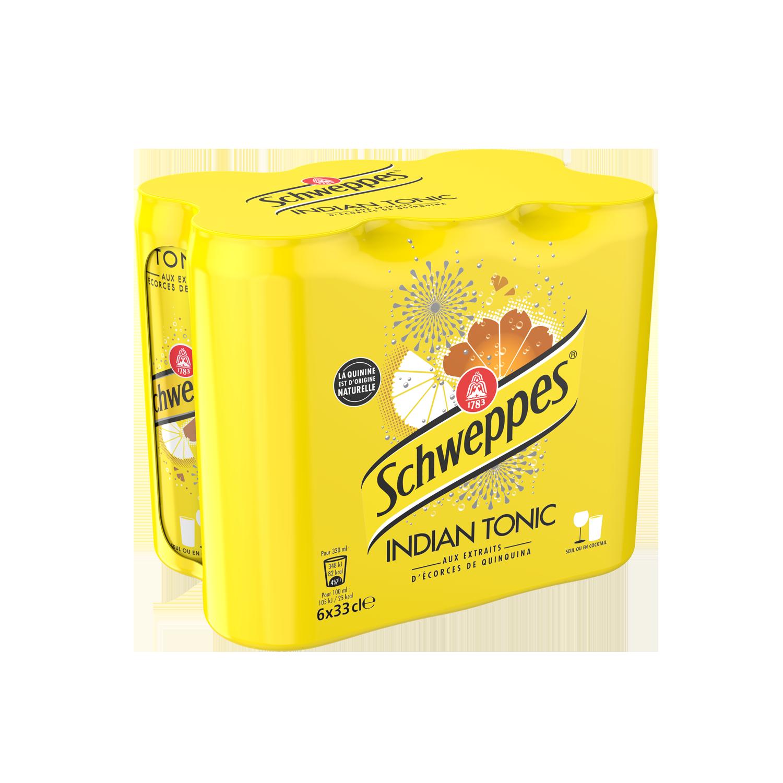 Pack de Schweppes Indian Tonic (6 x 33 cl)