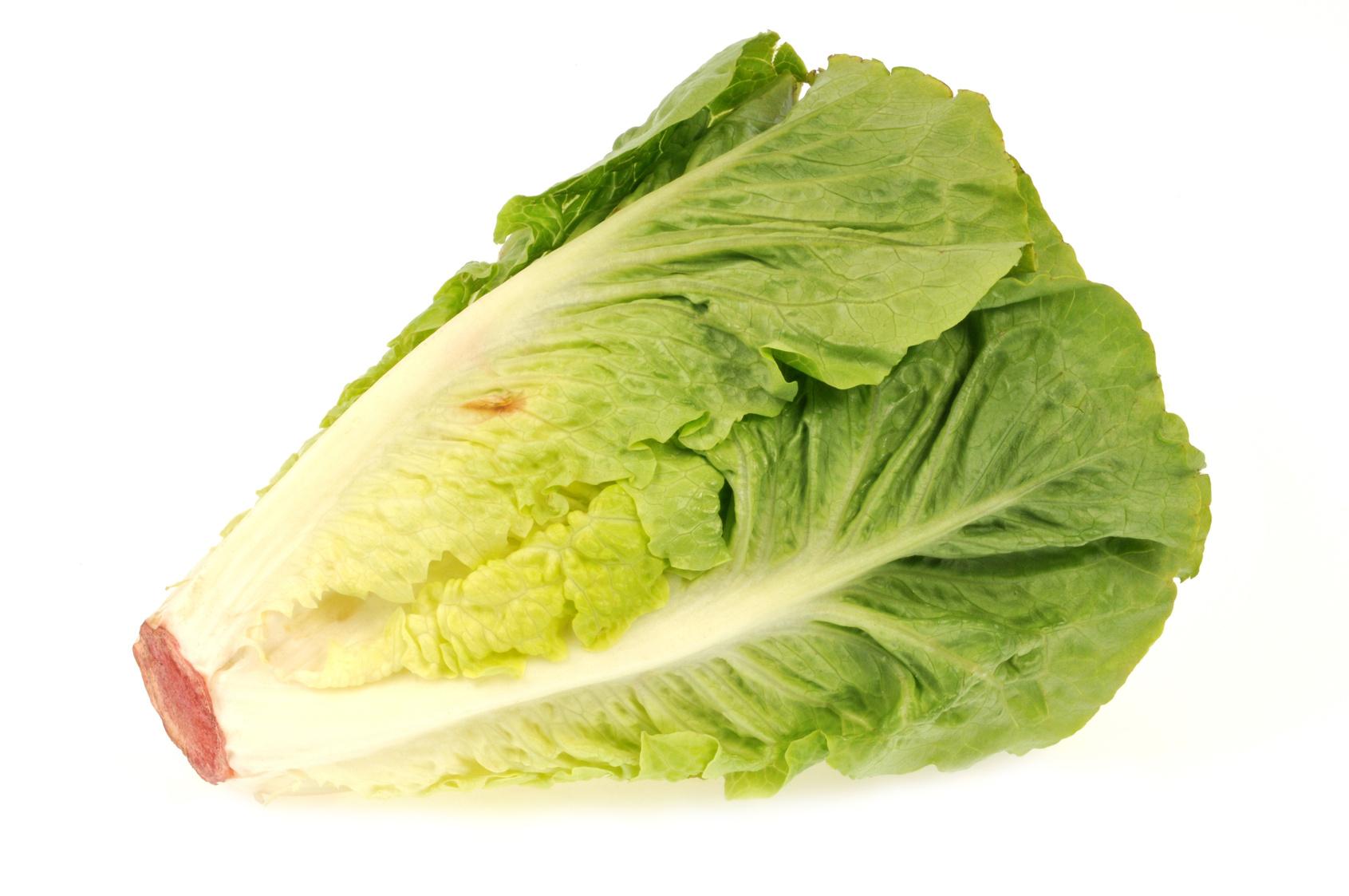 Salade coeur de romaine