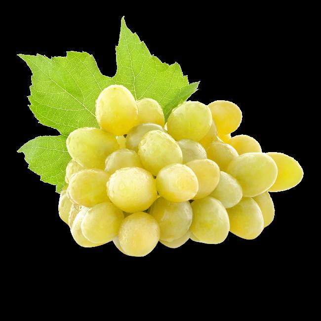 Raisin blanc Exalta ou Centennial Fr. sans pépins BIO