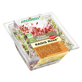 Radis rose germé BIO, Germline (40 g)