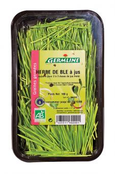 Herbe de blé BIO, Germline (100 g)