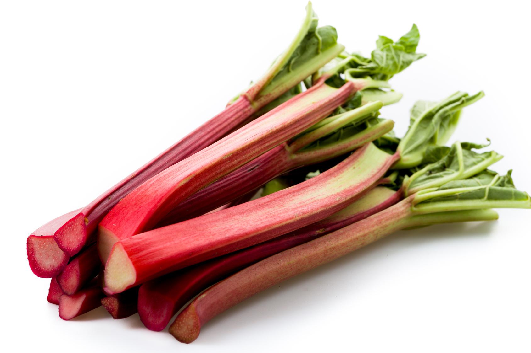 Rhubarbe (x 1)