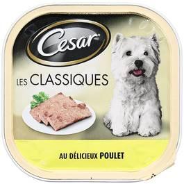 Terrine au poulet pour chien, Cesar (300 g)