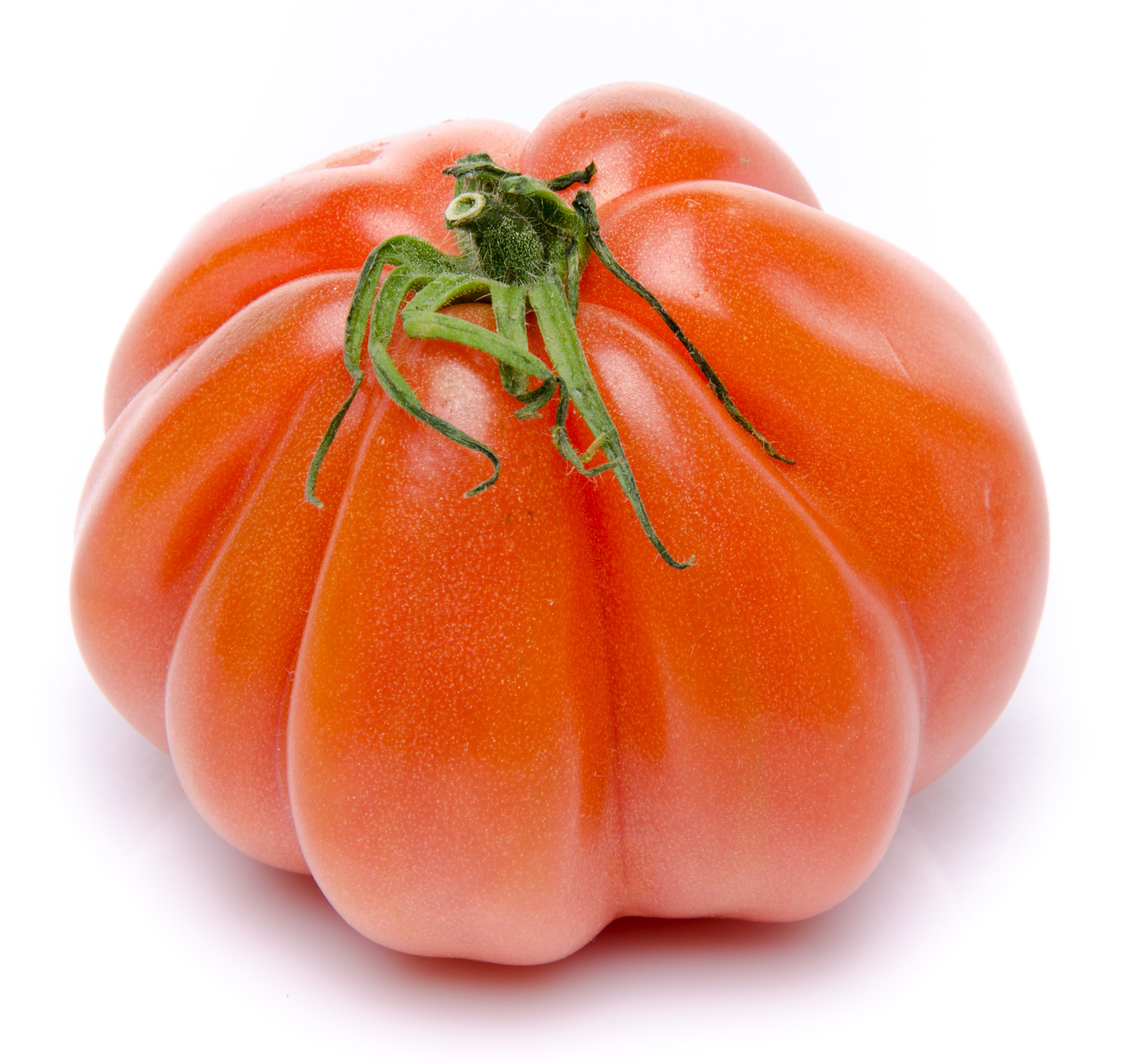 Tomate ancienne Coeur de Boeuf BIO