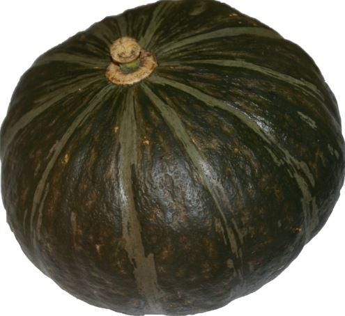 Potimarron vert BIO (petit cal. de 300 à 600 g)