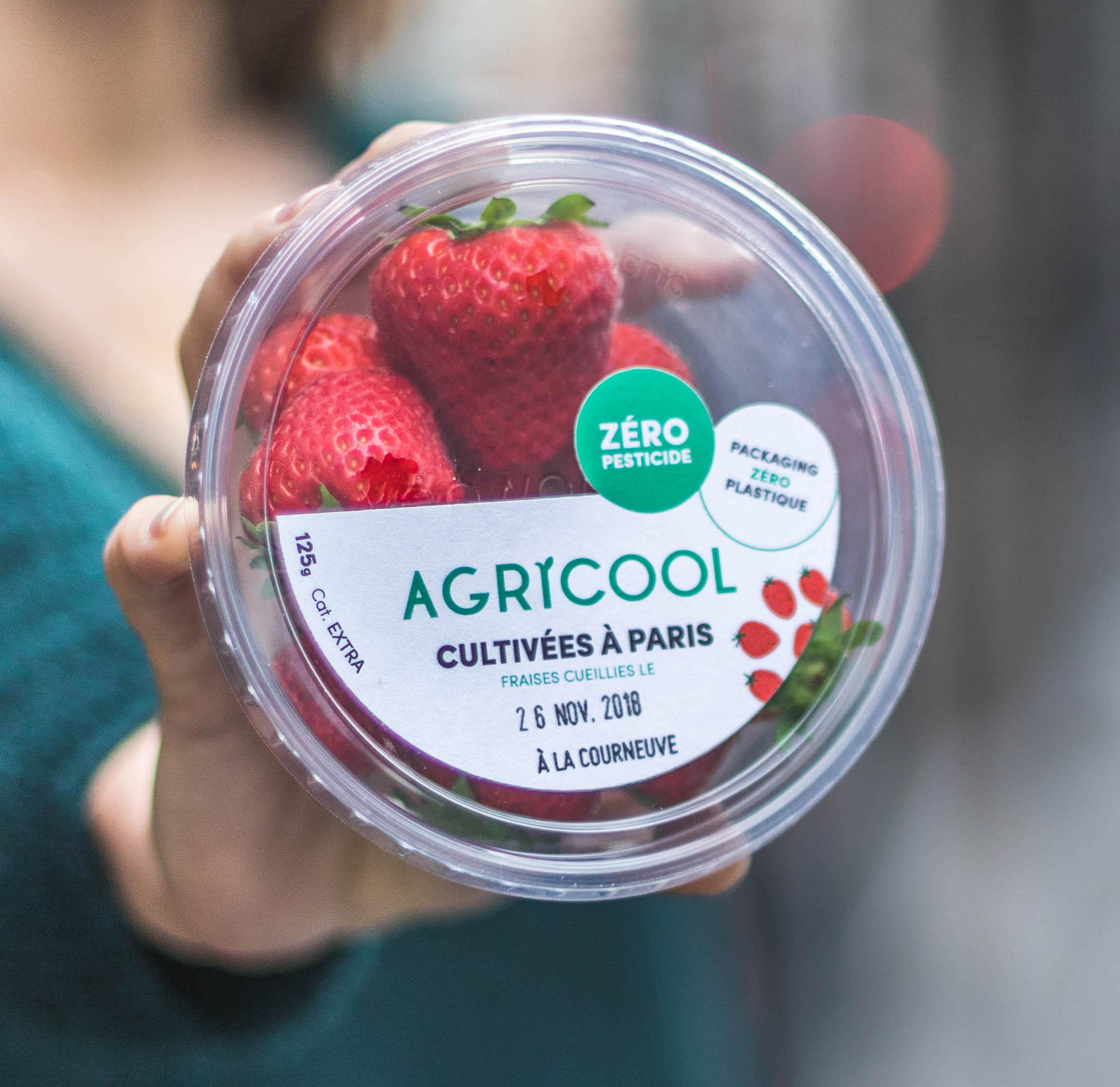 Délicieuses fraises sans pesticide cultivées à Paris, Agricool (125 g)