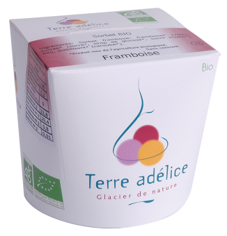 Sorbet à la framboise, Terre Adélice (500 ml)
