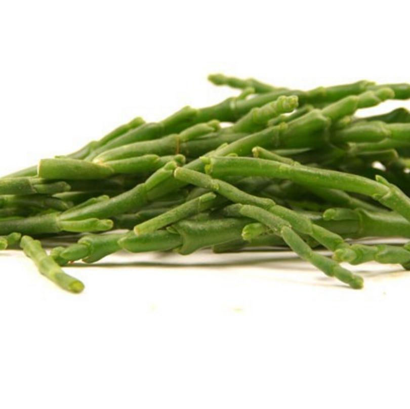 Salicorne fraîche (300 g)