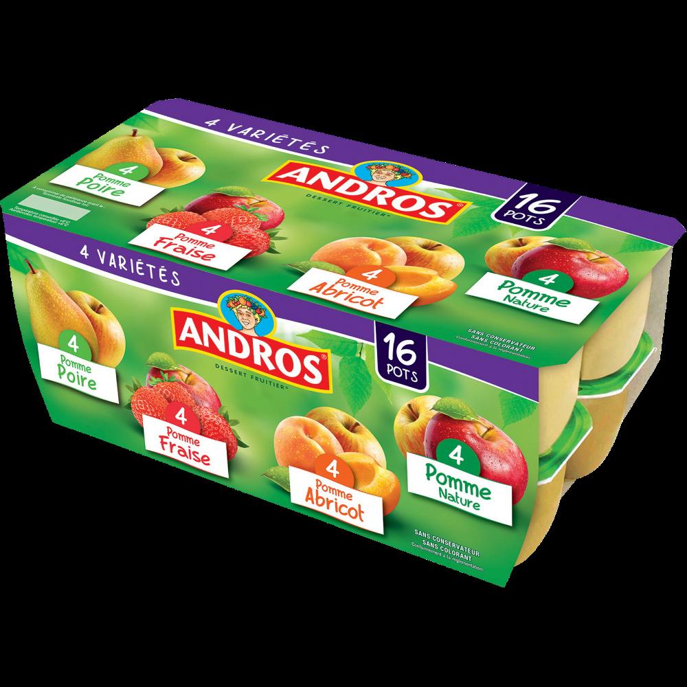 Dessert fruitier multifruits, Andros (16 x 100 g)