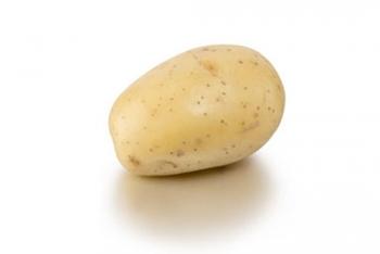Pomme de terre Mélody BIO