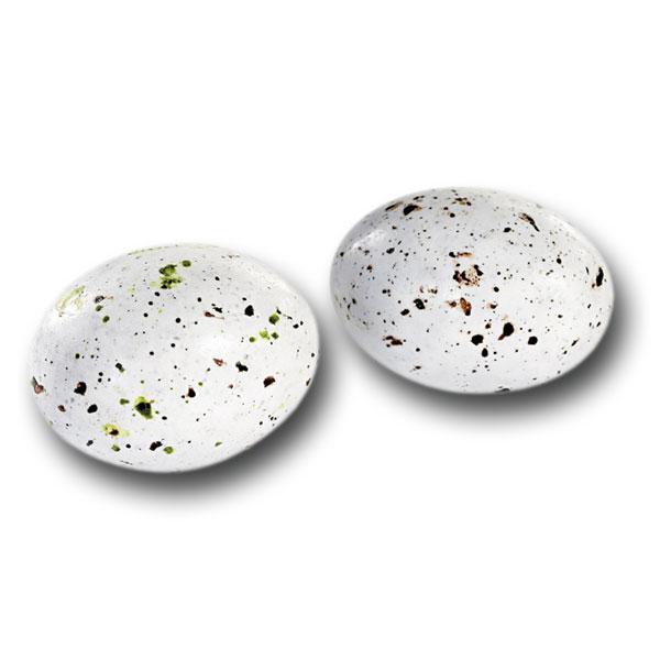 Oeufs de mouette (130 g)