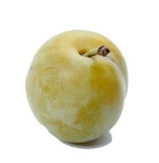 Prune jaune Reine-claude de Bavay Fr. BIO