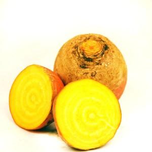 Betterave jaune (crue)