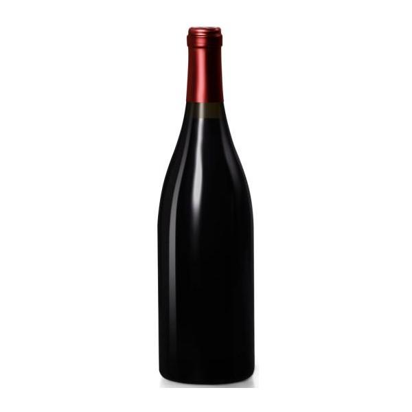 Côtes du Rhône rouge Pont du Rhône 2016 (75 cl)