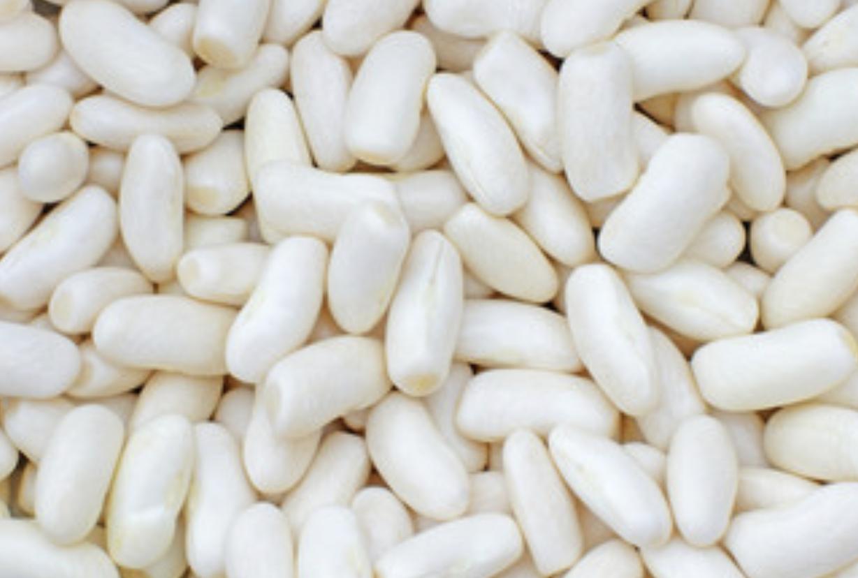 Haricot lingot blanc secs, Legumor (500 g)