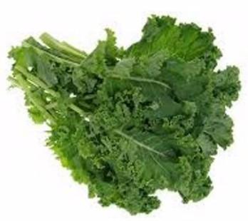 Chou Kale Fr. BIO