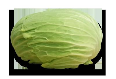 Chou plat Choudou BIO