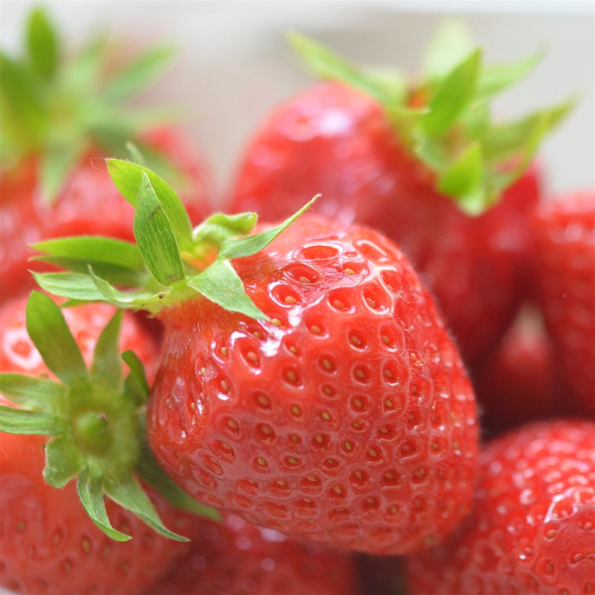 Barquette de fraise Cirafine Fr. BIO (barquette de 250 g)