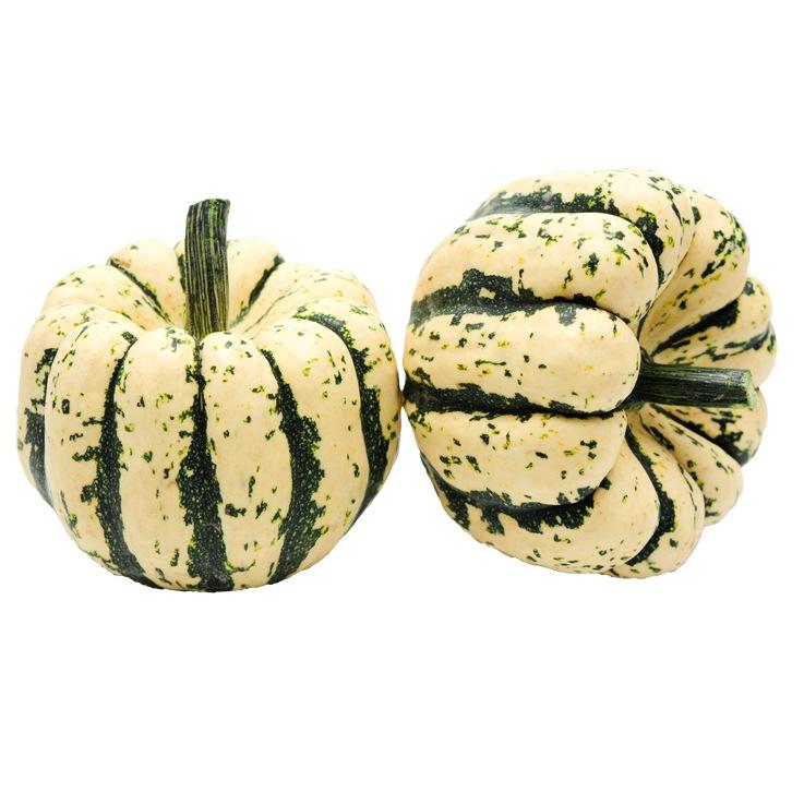 Courge Patidou chesnut BIO (petit cal. de 300 à 500 g)