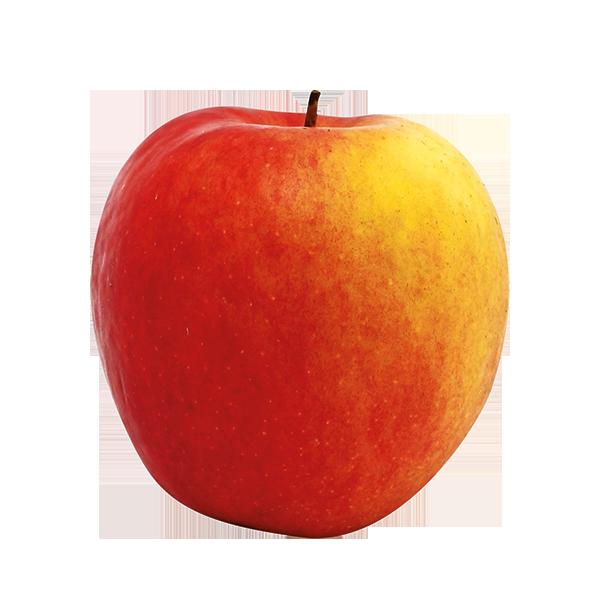 Pomme bicolore Crimson crip Fr. BIO
