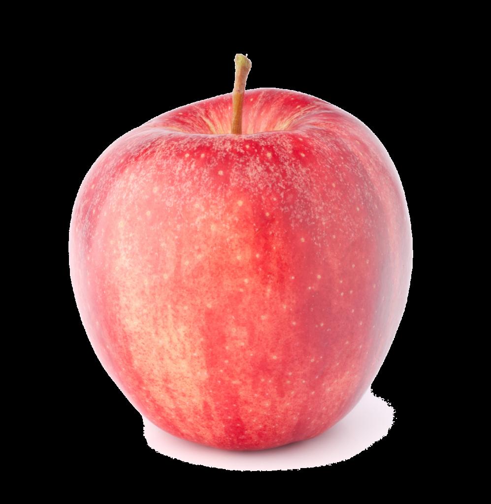 Pomme bicolore Dalinette Fr. BIO
