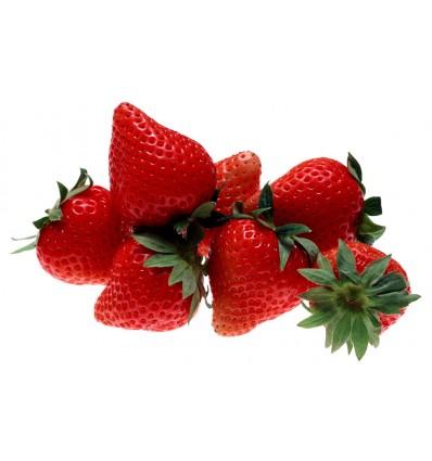 Barquette de fraises Charlotte Fr. (environ 450 g)