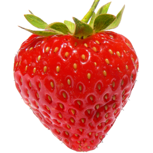 Barquette de fraises Clery, Dream Fr. BIO (250 g)