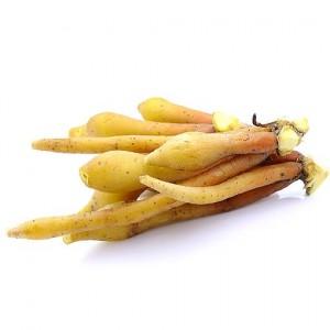 Gian Dai - kachai, gingembre aromatique
