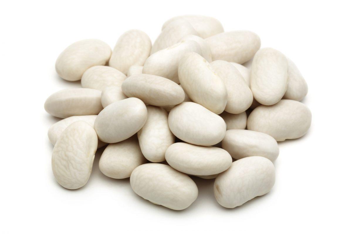 Haricot coco blanc, Légumor (500 g)