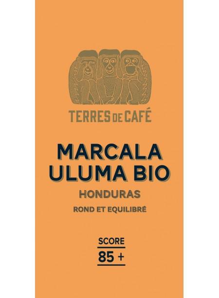 Café moulu Honduras Marcala Ceiba Bio, Terres de Café (250 g)
