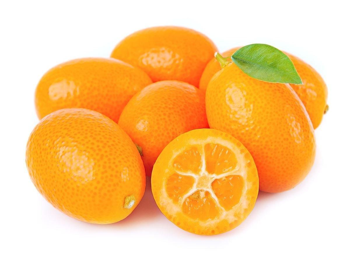 Kumquat It. BIO