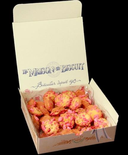 Les gourmandises aux pralinés Saint Genix, La Maison du Biscuit (550 g)