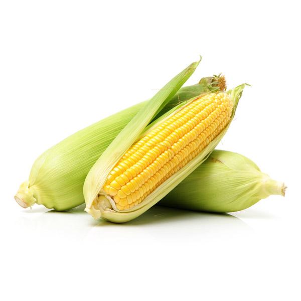 Epi de maïs cuit Fr. BIO (x 2, 400 g)