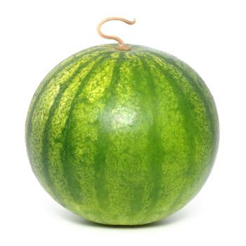 Pastèque (de 5 à 7 kg)