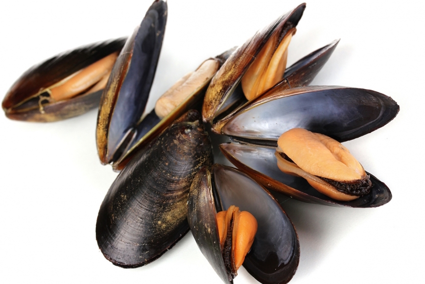 Moules de Hollande (2 kg)