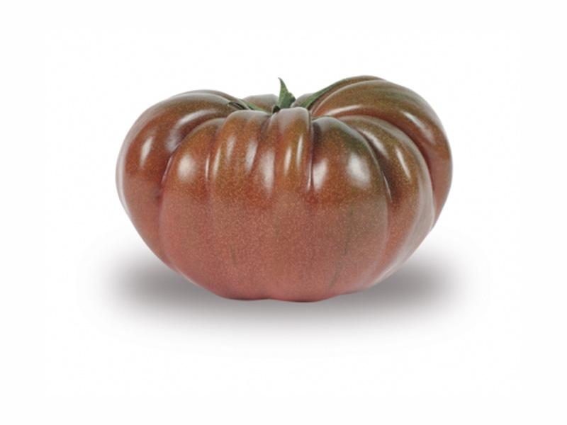Tomate côtelée noire Esp. BIO