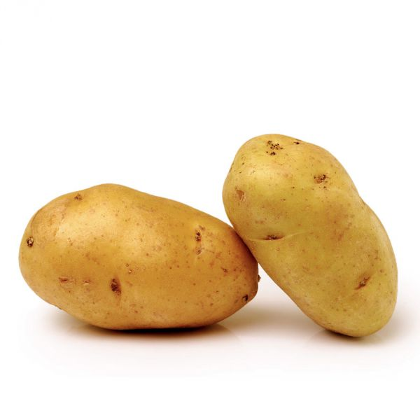 Pomme de terre Nicola Fr. BIO