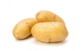 Pomme de terre Agria BIO