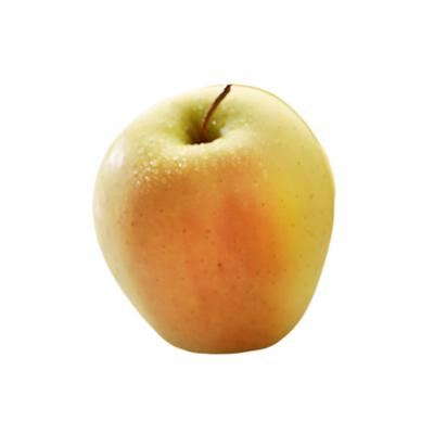 Pomme Golden Rosée Fr.